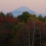 県営牧場から見る富士山